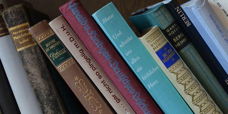 Alte Bücher vom Antik- und Trödelmarkt Bad Bevensen © Petra Hitz-Bergmann